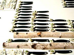ostknivar-i-skogsmiljo-foto-maltidsvision